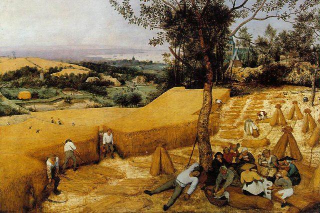 Les moissonneurs - Brueghel