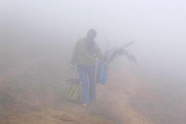 Flüchtlingsbegleiterin in Guatemala | Foto: Anne Lummerich