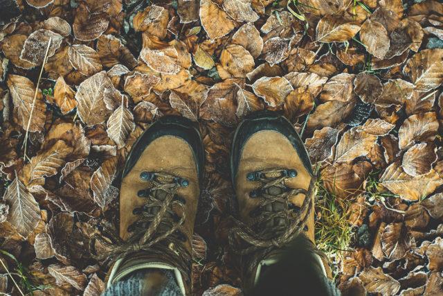 Wanderschuhe geschnürt und los geht's. Foto: pixabay
