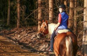 § 58 des Landschaftsschutzgesetzes regelt das Reiten in Wald und Natur. Foto: privat